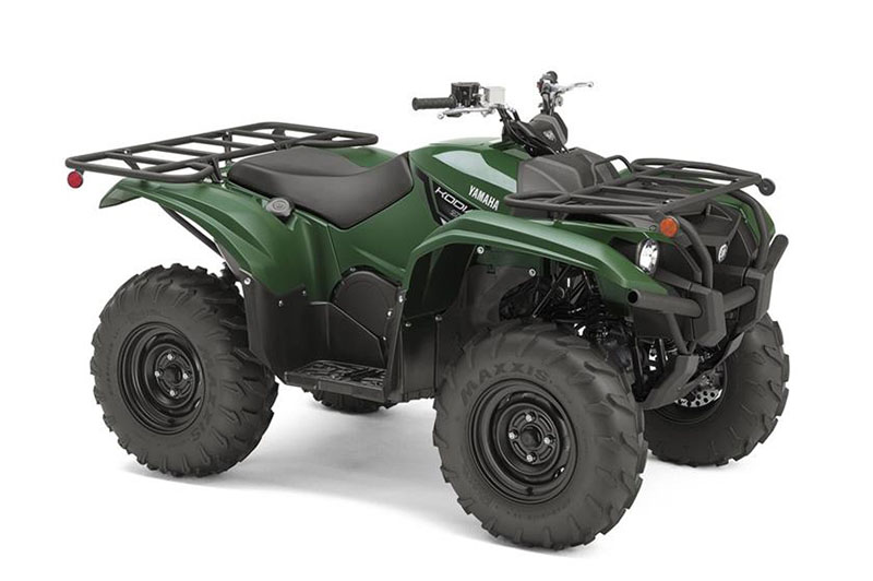 2019 Yamaha Kodiak 700 in Greenville, North Carolina - Photo 2
