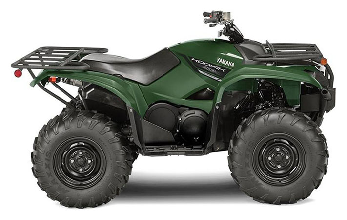 2019 Yamaha Kodiak 700 in Danbury, Connecticut - Photo 1
