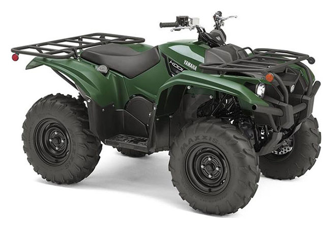2019 Yamaha Kodiak 700 in Huron, Ohio - Photo 2