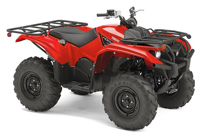 2019 Yamaha Kodiak 700 in Francis Creek, Wisconsin - Photo 2