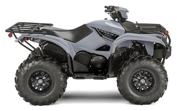 2019 Yamaha Kodiak 700 EPS in Huron, Ohio - Photo 1