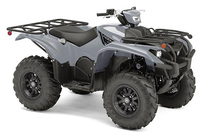2019 Yamaha Kodiak 700 EPS in Huron, Ohio - Photo 2