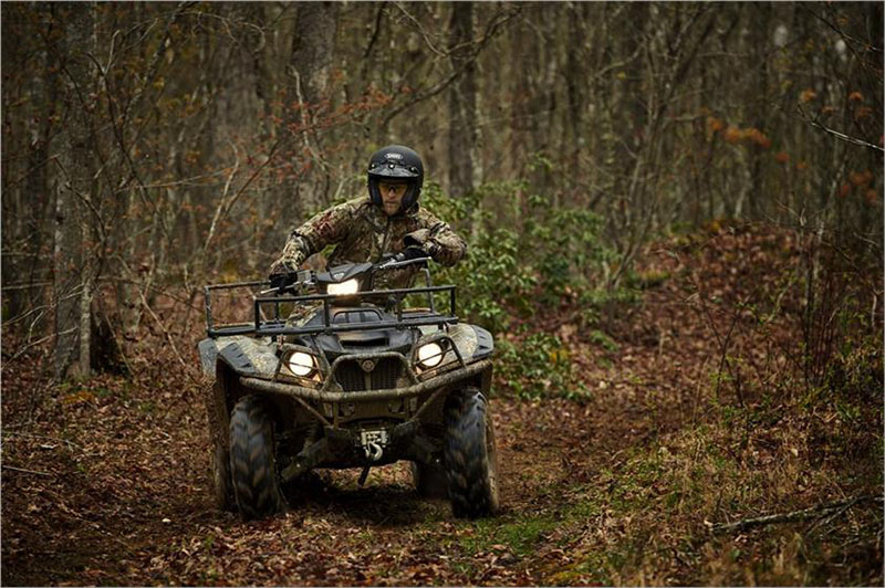 2019 Yamaha Kodiak 700 EPS in Norfolk, Virginia - Photo 4