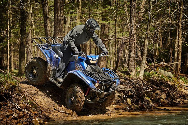2019 Yamaha Kodiak 700 EPS SE in Canton, Ohio