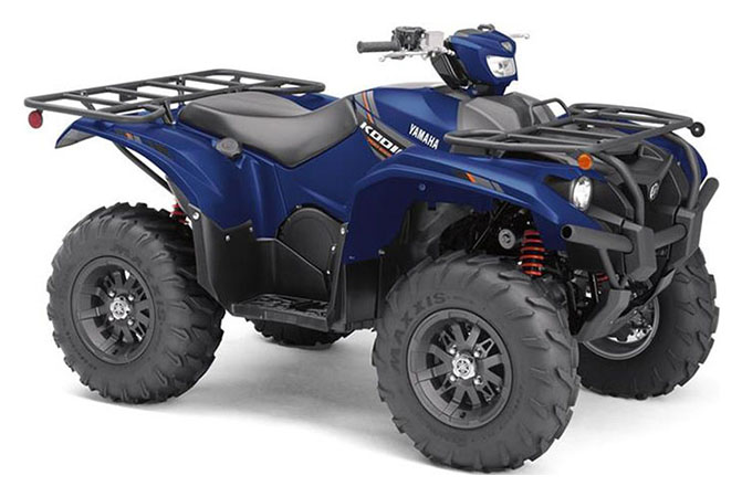 2019 Yamaha Kodiak 700 EPS SE in Dayton, Ohio - Photo 2
