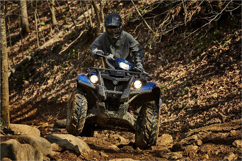 2019 Yamaha Kodiak 700 EPS SE in Fairfield, Illinois
