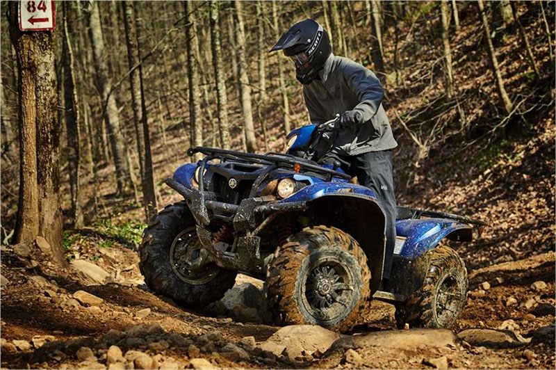 2019 Yamaha Kodiak 700 EPS SE in Appleton, Wisconsin - Photo 4