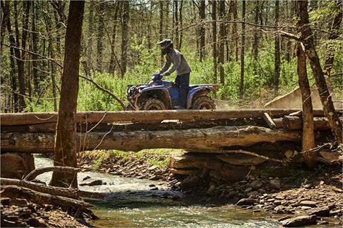 2019 Yamaha Kodiak 700 EPS SE in Brilliant, Ohio - Photo 5