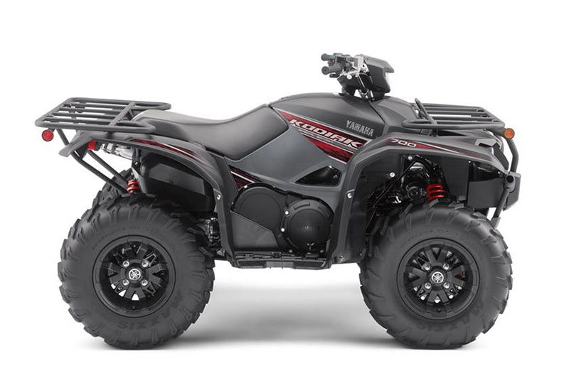 2019 Yamaha Kodiak 700 EPS SE in Hobart, Indiana - Photo 1