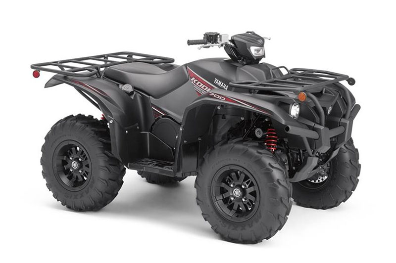 2019 Yamaha Kodiak 700 EPS SE in Asheville, North Carolina
