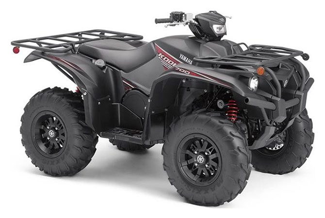 2019 Yamaha Kodiak 700 EPS SE in Modesto, California - Photo 2