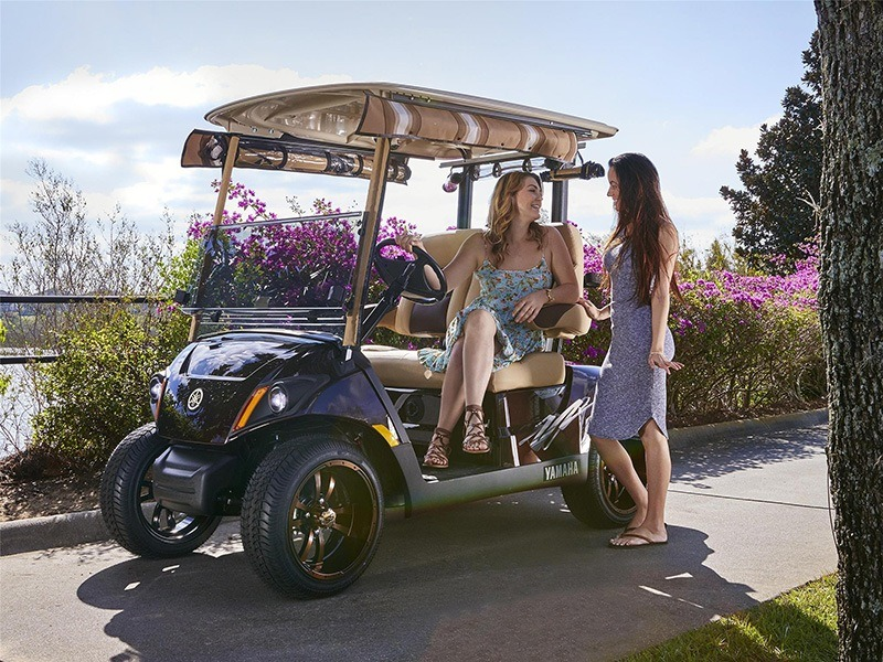 2019 Yamaha The Drive2 PTV (AC) in Otsego, Minnesota
