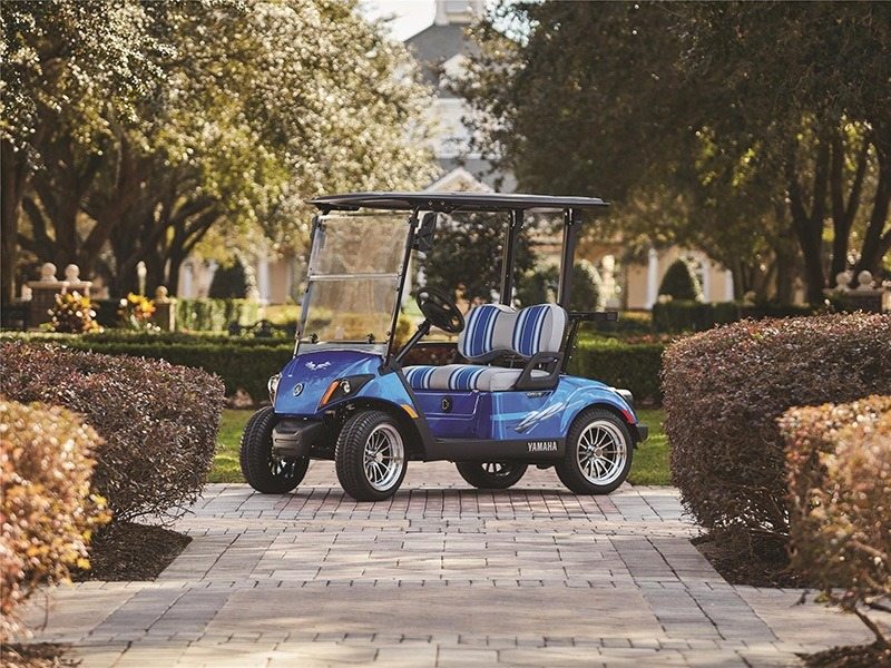 2019 Yamaha The Drive2 PTV (Gas EFI) in Tifton, Georgia