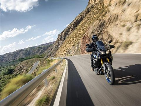 2019 Yamaha Super Ténéré ES in Colorado Springs, Colorado - Photo 11
