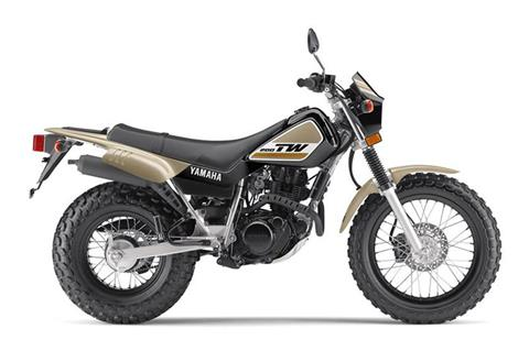 2019 Yamaha TW200 in Baldwin, Michigan