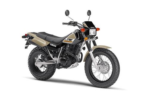 2019 Yamaha TW200 in Lakeport, California