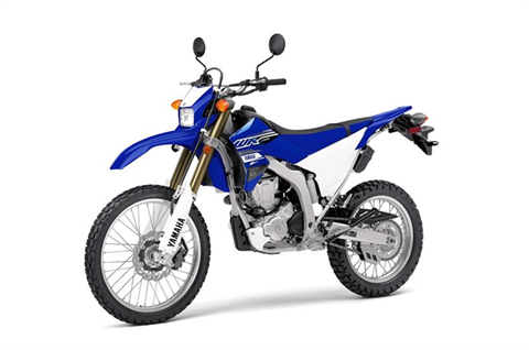 2019 Yamaha WR250R in Greenville, North Carolina