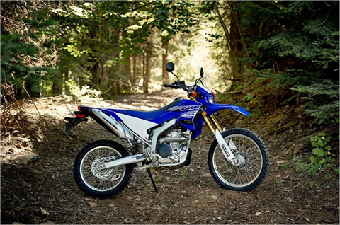 2019 Yamaha WR250R in Hailey, Idaho