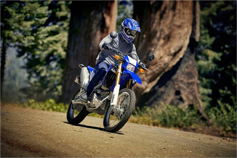 2019 Yamaha WR250R in Northampton, Massachusetts - Photo 8