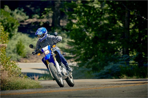 2019 Yamaha WR250R in Danbury, Connecticut