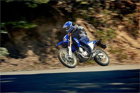 2019 Yamaha WR250R in Albuquerque, New Mexico - Photo 7