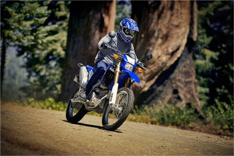 2019 Yamaha WR250R in Metuchen, New Jersey - Photo 8