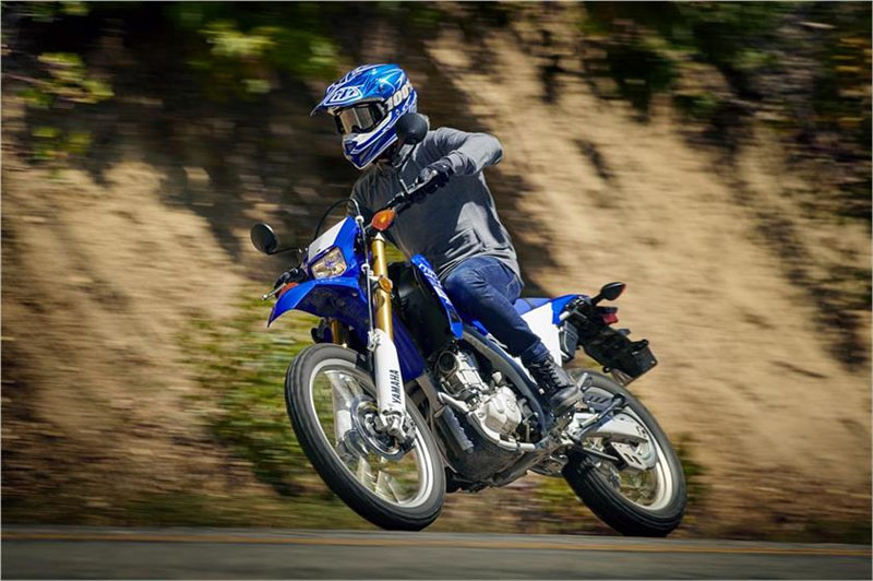 2019 Yamaha WR250R in Metuchen, New Jersey - Photo 10