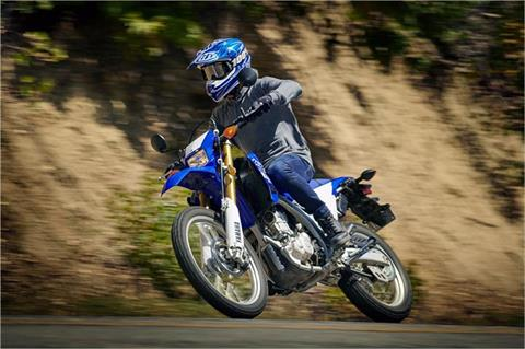 2019 Yamaha WR250R in Santa Clara, California - Photo 10