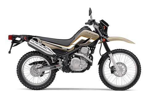 2019 Yamaha XT250 in Baldwin, Michigan