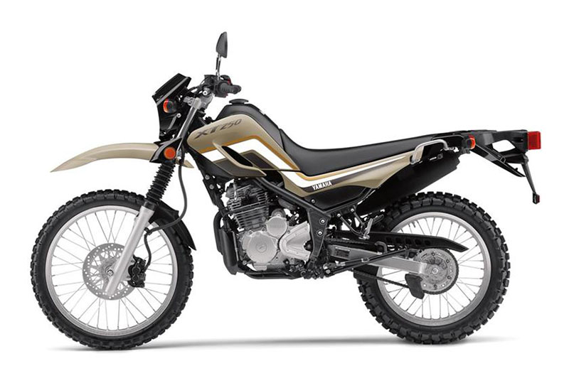 2019 Yamaha XT250 in Merced, California