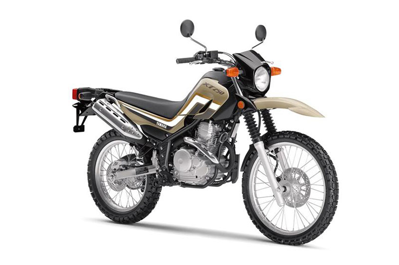 2019 Yamaha XT250 in Tamworth, New Hampshire