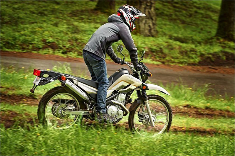 2019 Yamaha XT250 in Olympia, Washington - Photo 7