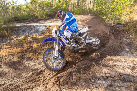 2019 Yamaha WR250F in Dimondale, Michigan