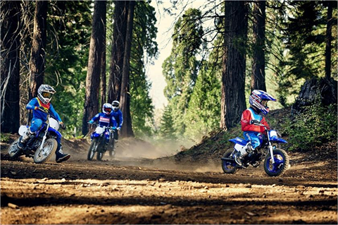 2019 Yamaha PW50 in Victorville, California