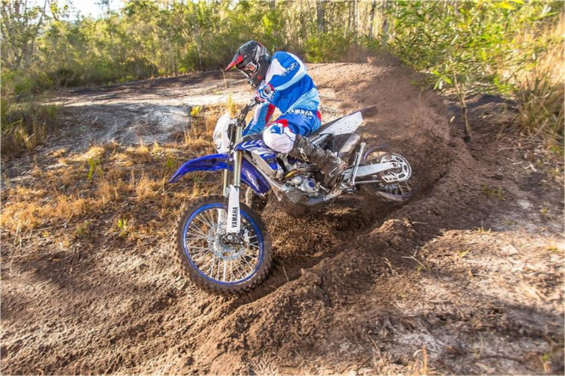 2019 Yamaha WR250F in Simi Valley, California - Photo 6