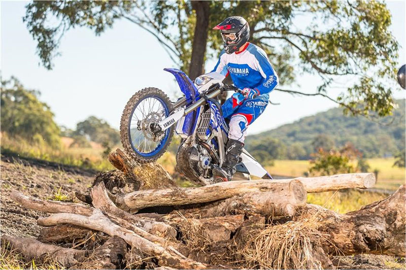 2019 Yamaha WR250F in Victorville, California - Photo 9