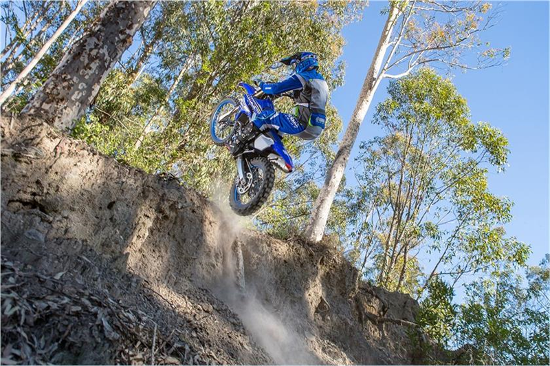 2019 Yamaha WR450F in Modesto, California