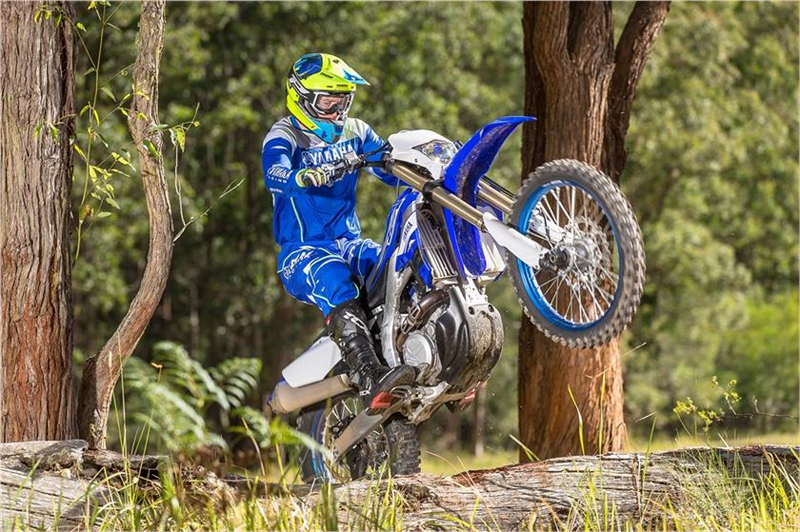 2019 Yamaha WR450F in Victorville, California - Photo 11