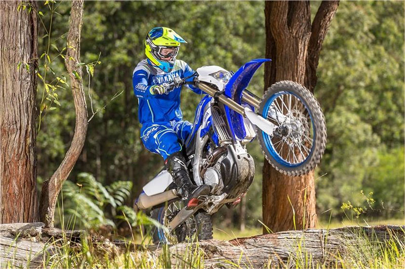 2019 Yamaha WR450F in Greenville, North Carolina - Photo 11