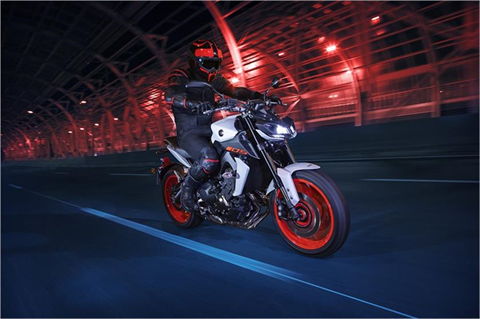 2019 Yamaha MT-09 in Olympia, Washington