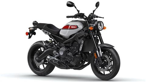 2019 Yamaha XSR900 in Marietta, Ohio