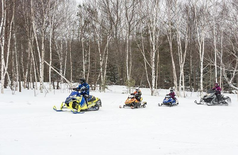 2019 Yamaha SnoScoot ES in Belle Plaine, Minnesota
