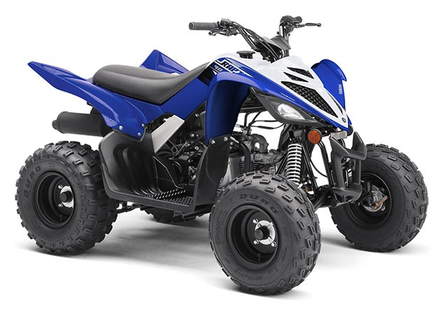 2020 Yamaha Raptor 90 in Saint Helen, Michigan - Photo 2