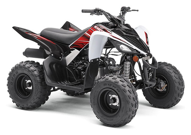 2020 Yamaha Raptor 90 in Dubuque, Iowa - Photo 2