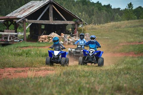 2020 Yamaha YFZ50 in Francis Creek, Wisconsin - Photo 5
