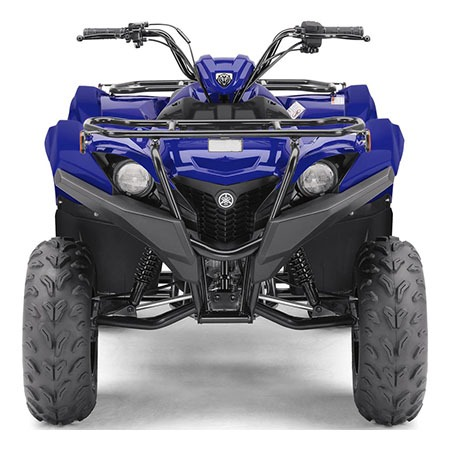 2020 Yamaha Grizzly 90 in Long Island City, New York - Photo 5