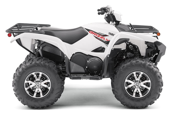 2020 Yamaha Grizzly EPS in San Jose, California - Photo 1