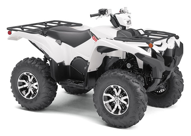 2020 Yamaha Grizzly EPS in Metuchen, New Jersey - Photo 2
