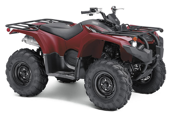 2020 Yamaha Kodiak 450 in Queens Village, New York - Photo 2