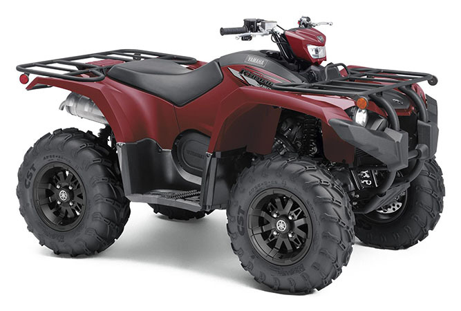 2020 Yamaha Kodiak 450 EPS in Trego, Wisconsin - Photo 2